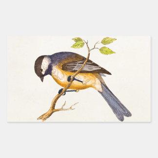 Vintage Song Bird Illustration -1800's Birds Rectangle Sticker