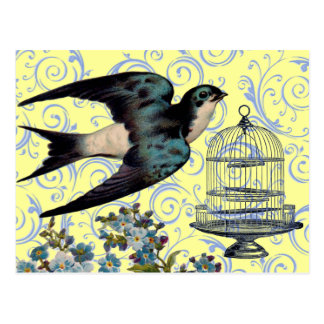 Vintage Sparrow Cage Postcards