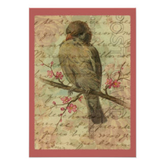 Vintage Sparrow Poster