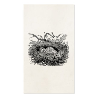 Vintage Speckled Eggs Bird Nest Personalized Birds Pack Of Standard Business Cards