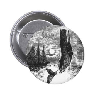 Vintage Sperm Whale Breaching, Marine Life Animals 6 Cm Round Badge