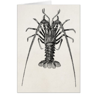 Vintage Spiny Lobster Personalized Template Greeting Card