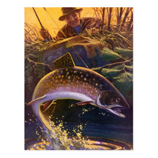 Vintage Sports Trout Fishing Catch and Release Postcard