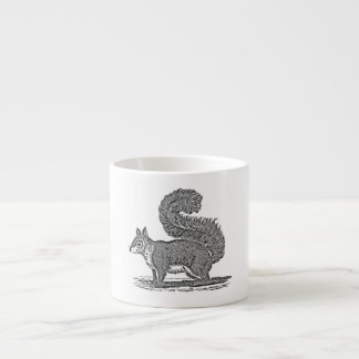 Vintage Squirrel Illustration - 1800's Squirrels Espresso Cup