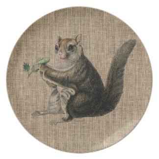 Vintage Squirrel on burlap Melamine Plate