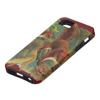 Vintage Squirrels, Forest Creatures, Wild Animals iPhone 5 Cases