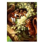 Vintage Squirrels Post Cards