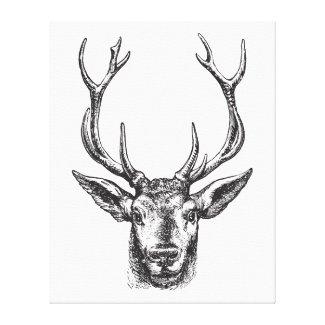Vintage Stag, Buck, Elk, Deer Head with Antlers Canvas Print