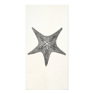 Vintage Starfish Antique Star Fish Template Customized Photo Card