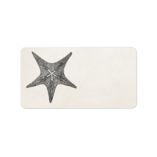 Vintage Starfish Antique Star Fish Template Label