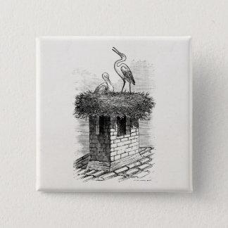 Vintage Stork Bird Nest Bird Antique Template 15 Cm Square Badge