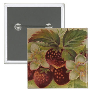 Vintage Strawberries 15 Cm Square Badge