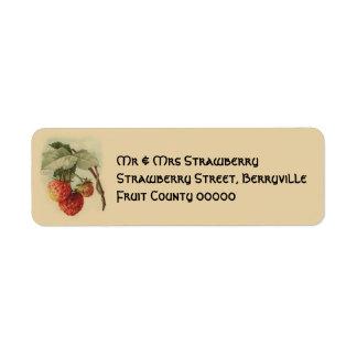 Vintage strawberries return address label