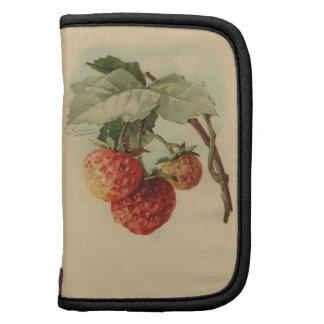 Vintage strawberries planners
