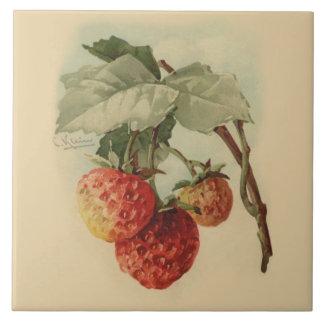 Vintage strawberries tile