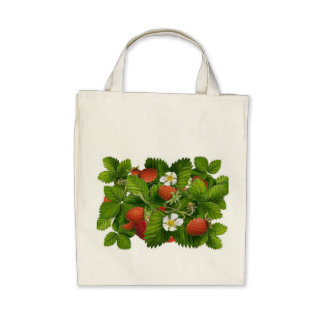 Vintage Strawberry Plant Bags
