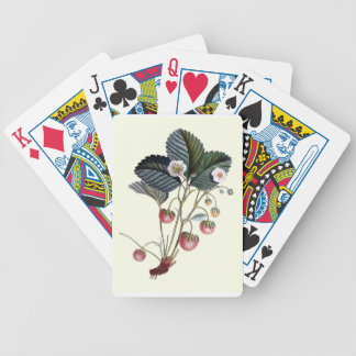 Vintage Strawberry Plant Illustration Bicycle Playing Cards