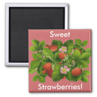 Vintage Strawberry Plant Refrigerator Magnet