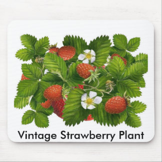 Vintage Strawberry Plant Mouse Pad