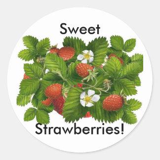 Vintage Strawberry Plant Round Sticker