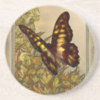 Vintage Style Butterfly Illustration Coaster