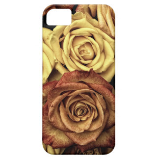 Vintage Style Cream and Red Roses Barely There iPhone 5 Case