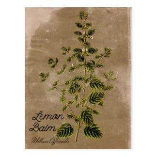 Vintage Style Lemon Balm Postcard