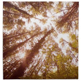 Vintage Summer Trees Napkin