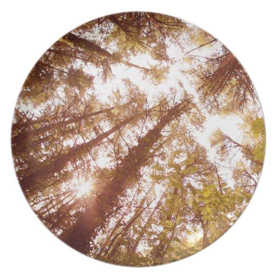 Vintage Summer Trees Plate