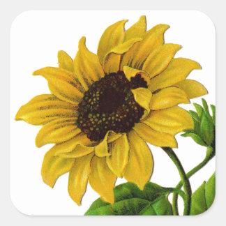 Vintage Sunflower Custom Gift Item Square Sticker