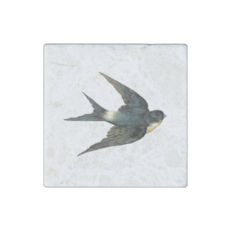 Vintage Swallow Bird Illustration Stone Magnet