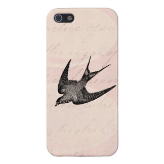 Vintage Swallow Illustration - 1800's Antique Bird iPhone 5 Cover