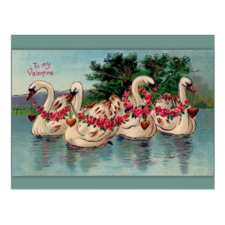 Vintage Swans and Roses Valentine Postcard