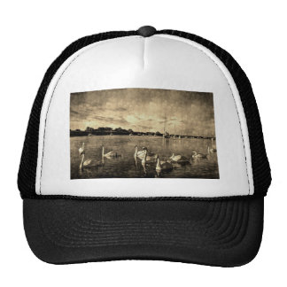 Vintage Swans Mesh Hat