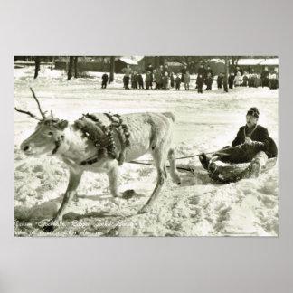 Vintage Sweden, Reindeer sleigh, Folk Museum, Poster