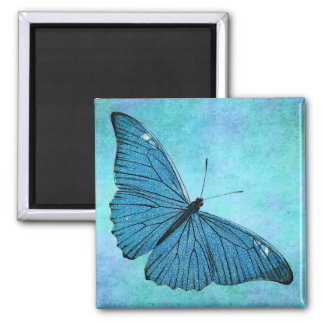 Vintage Teal Blue Butterfly 1800s Illustration Magnet