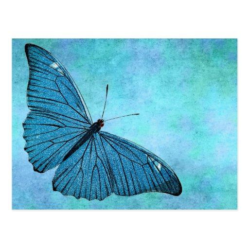 Vintage Teal Blue Butterfly 1800s Illustration Postcard