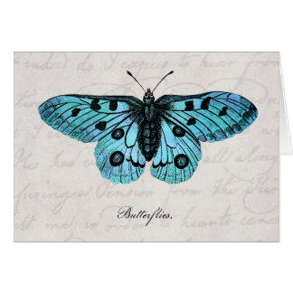 Vintage Teal Blue Butterfly Illustration -1800's Card