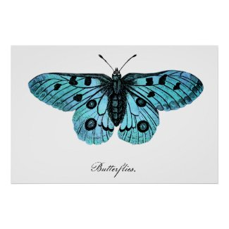 Vintage Butterfly Poster