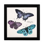 Vintage Teal Blue Purple Pink Butterfly Drawing