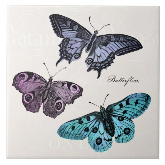 Vintage Teal Blue Purple Pink Butterfly Drawing Large