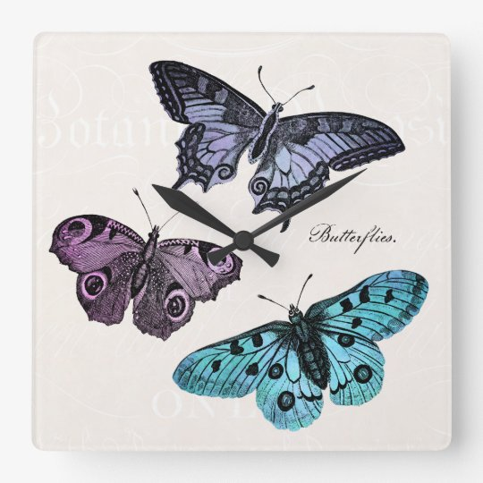 Vintage Teal Blue Purple Pink Butterfly Drawing Square