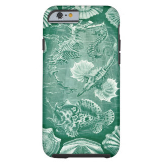 Vintage Teleostei Fish and Shells by Ernst Haeckel Tough iPhone 6 Case