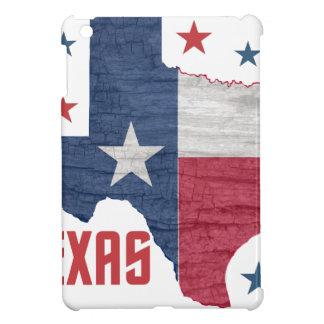 Vintage Texas iPad Mini Covers