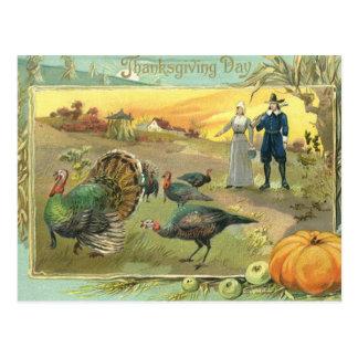 Vintage Thanksgiving with Turkeys and Pilgrims Postcard