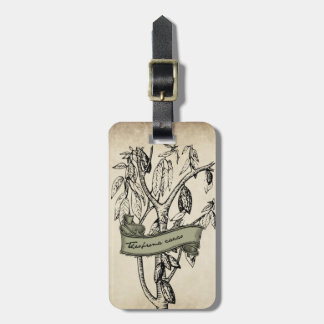 Vintage Theobroma Cacao Raw Chocolate Luggage Tag