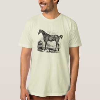 Vintage Thoroughbred Horse Equestrian Personalized T-Shirt