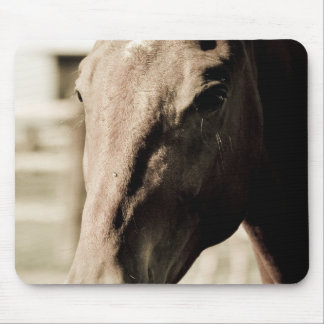 Vintage Thoroughbred Mouse Pad