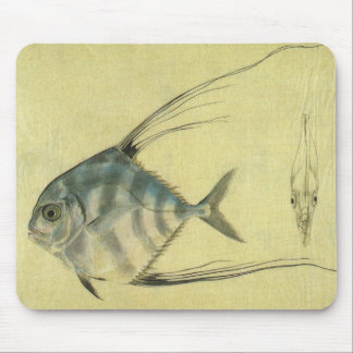 Vintage Threadfin Trevally, African Pompano Fish Mouse Mat