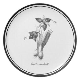 Vintage tiger flower etching plate